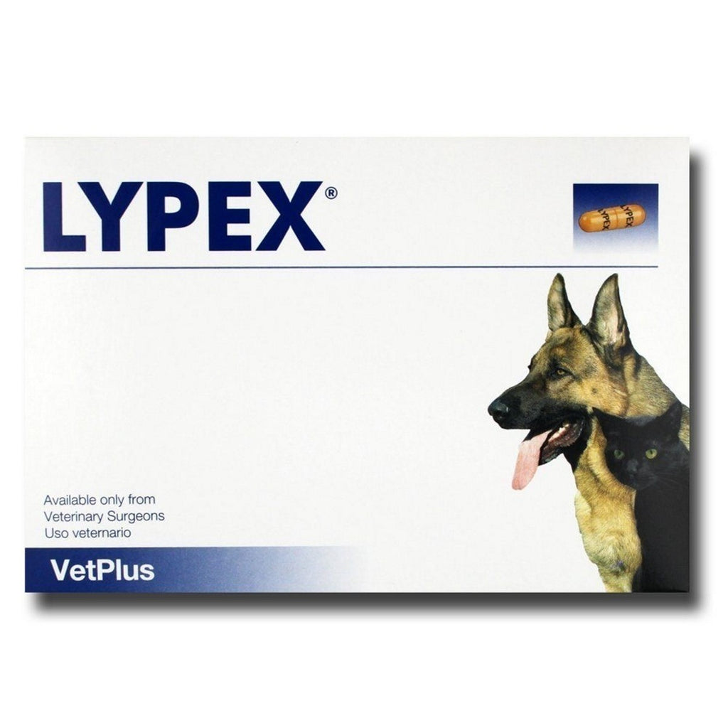 Lypex Pancreatic Enzyme Sprinkle Capsules for Dogs 60caps