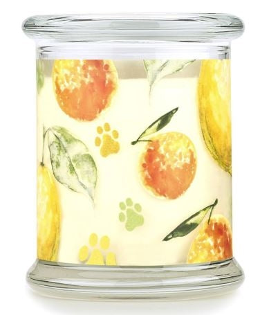 One Fur All Pet House Candle - Fresh Citrus 8.5oz