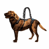 Dog Support Walking Accessories