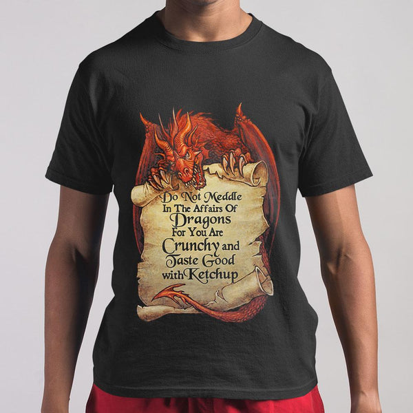 Do Not Meddle In The Affairs Of Dragons For You Are Crunchy And Taste Good With Ketchup T-shirt S By AllezyShirt