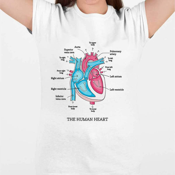The Human Heart Anatomy Cardiologist T-shirt M By AllezyShirt