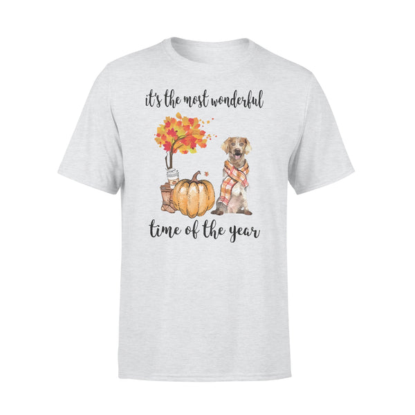 Fall Pumpkin It's The Most Wonderful Time Of The Year Brittany T-Shirt XL By AllezyShirt