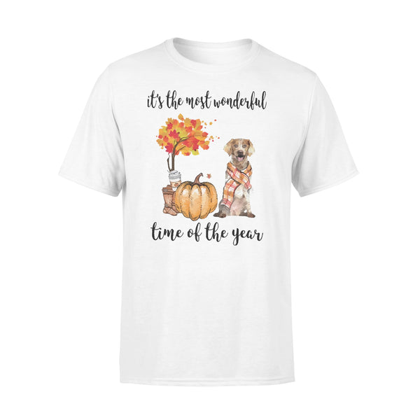 Fall Pumpkin It's The Most Wonderful Time Of The Year Brittany T-Shirt L By AllezyShirt