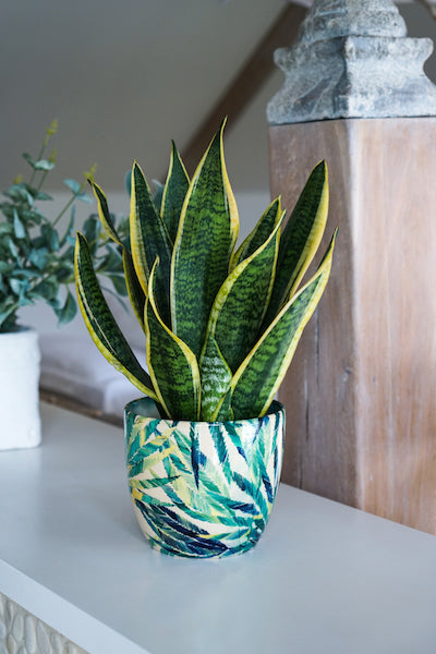 Tropical Ceramic Planter