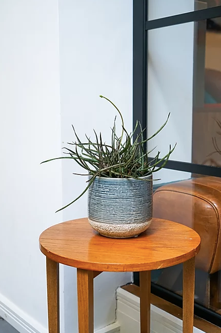 Ceramic Planter with a Crackle Base
