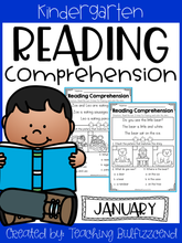 Load image into Gallery viewer, January Reading Comprehension Read and Match