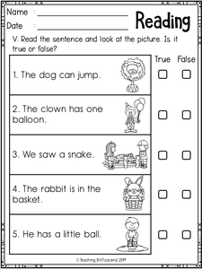 Reading Sentences Set 2
