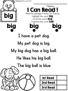 Sight Word Reader and Comprehension SET 1
