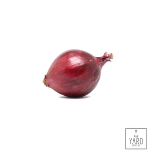 Organic Purple Onion