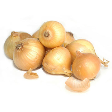 Onion yellow, 1pc