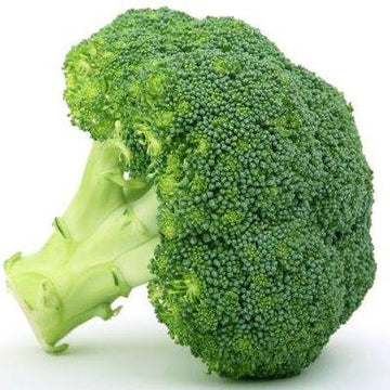 Broccoli, fresh, 1lb