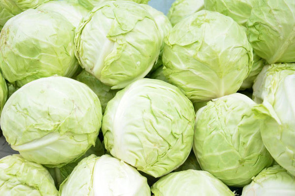 Cabbage head, 2-3lb per head