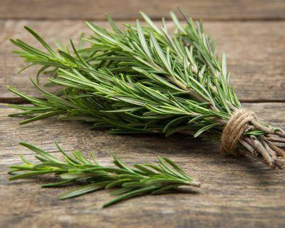 Rosemary, 1 bundle