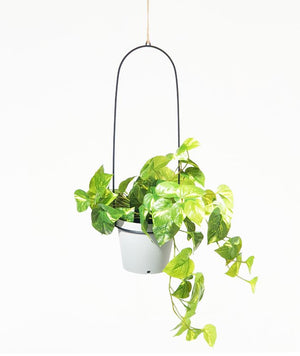 Bucket Hanging Planter