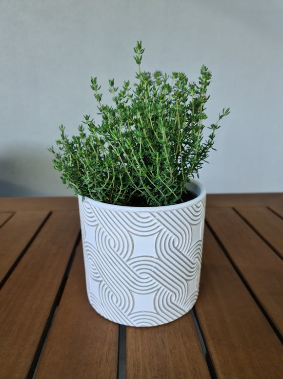 White Pot with Circle Design