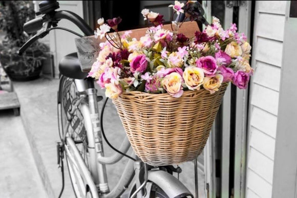 Bike & Roses Canvas Wall Art