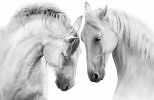 White Horses Wall Art Picture