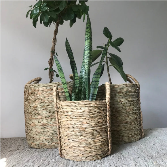 Natural Cattail Leaf Baskets