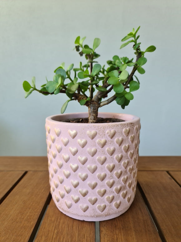 Pink & Gold Heart plant pot