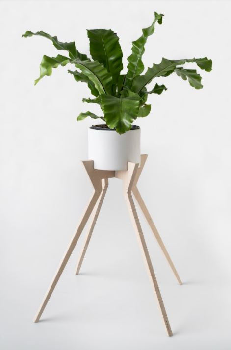 Xeno Pot Plant Holder (Ceramic Pot Included)