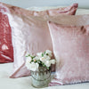 Beloved Rose Luster Velvet Pillow Sham