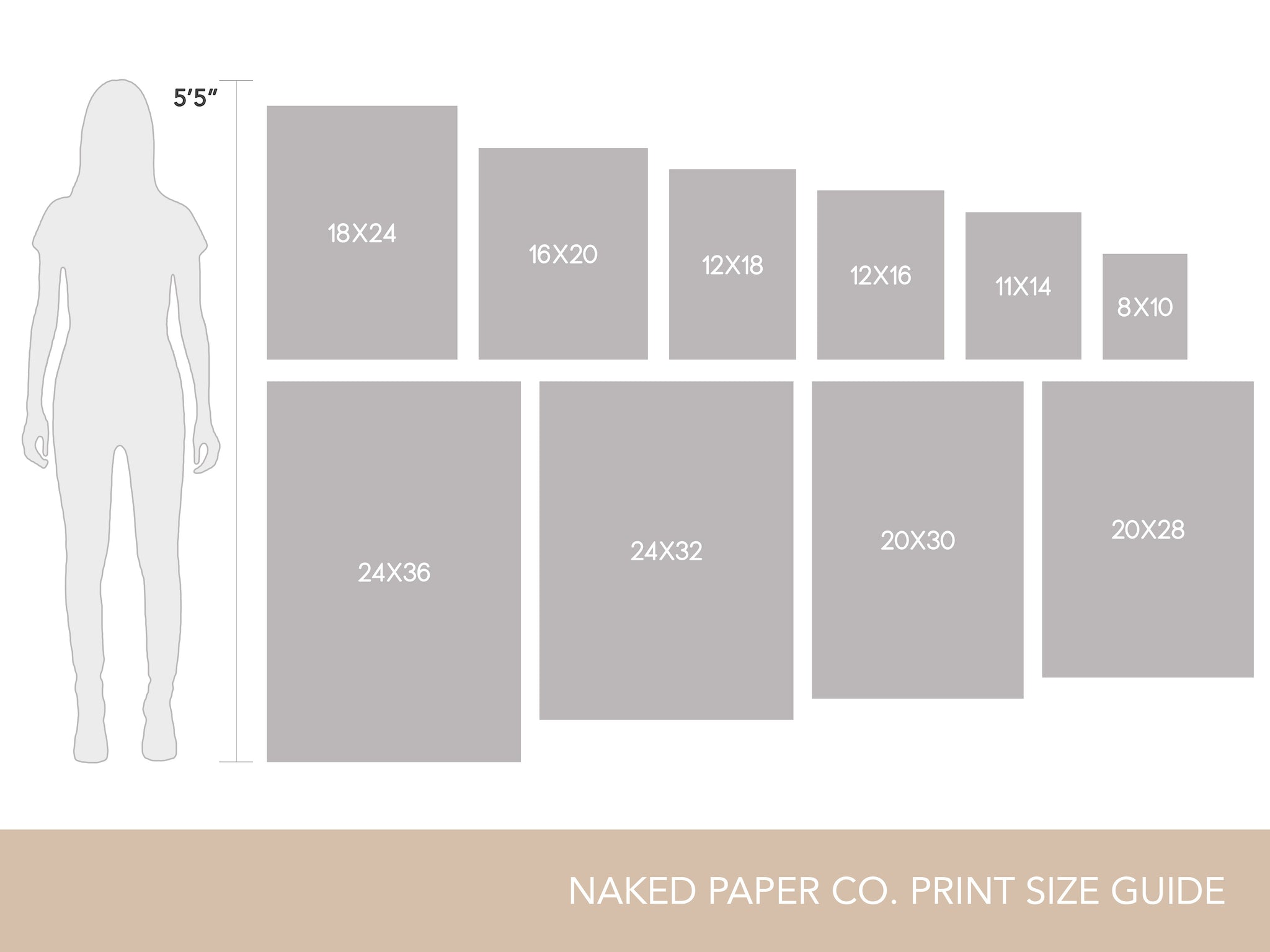 Naked-Paper-Co-Size-Chart