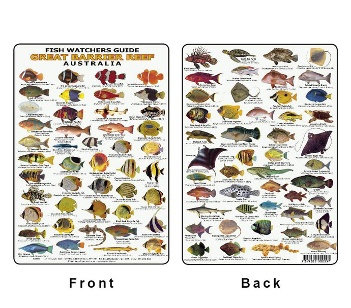 Fish ID Card - Divers Guide