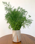 Load image into Gallery viewer, Herb Vase - Sus