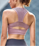 Women's Mesh Sports Bra - Purple