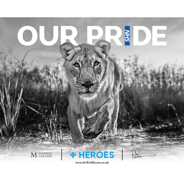 Our Pride (Digital Download) - David Yarrow - Art For Heroes