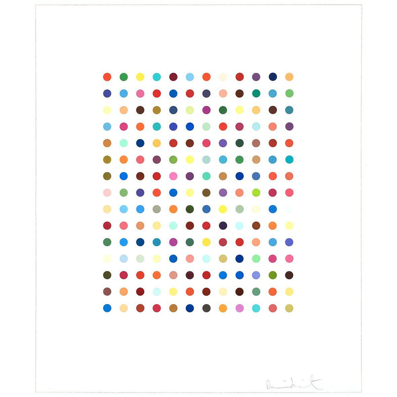 Ethidium Bromide Aqueous Solution - Damien Hirst - Art For Heroes