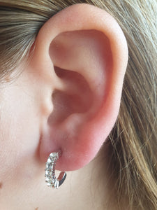 Women Earrings Fashion Stud Ear Crystal Rhinestone Elegant Sterling Jewelry Geometric Simple Hook Circle Designs Platinum color
