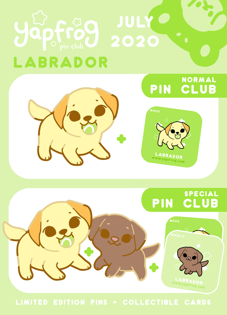 B grade #002-P Labrador Puppy [JULY 2020]