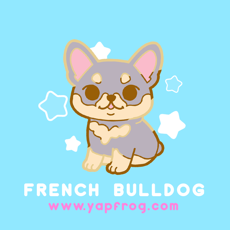 B grade #006-P French Bulldog Puppy [NOVEMBER 2020]