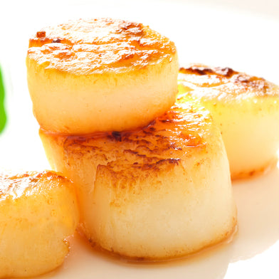 Sea Scallops Large Fresh USA