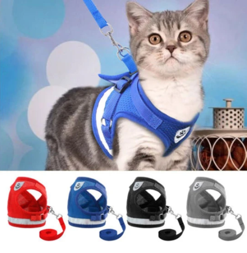 Cat Harness And Leash For Adventure
