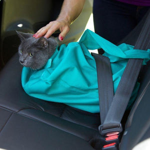 Buy One And Get One FREE: Cat Carrier Pouch - BLANCHBERRY