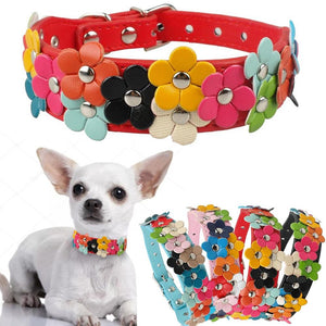 Dog Colorful Flower Decoration Collar
