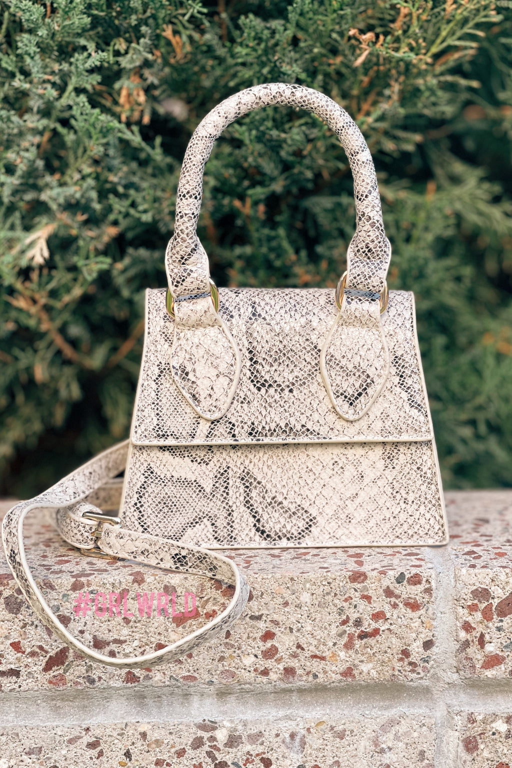 Snakeskin Mini/Medium Crossbody