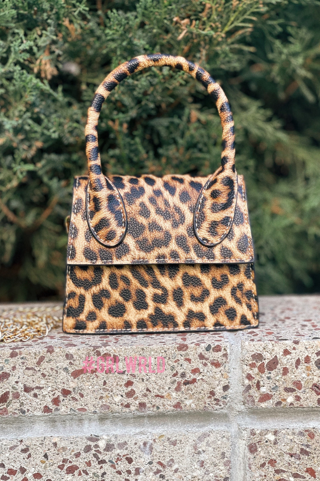 Leopard Mini/Medium Crossbody '