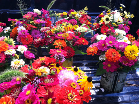 West Tisbury Farmers Market Flowers