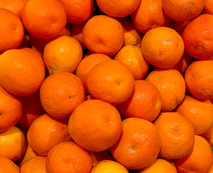 Organic Valencia Orange (8-9ct) Stehly Farms