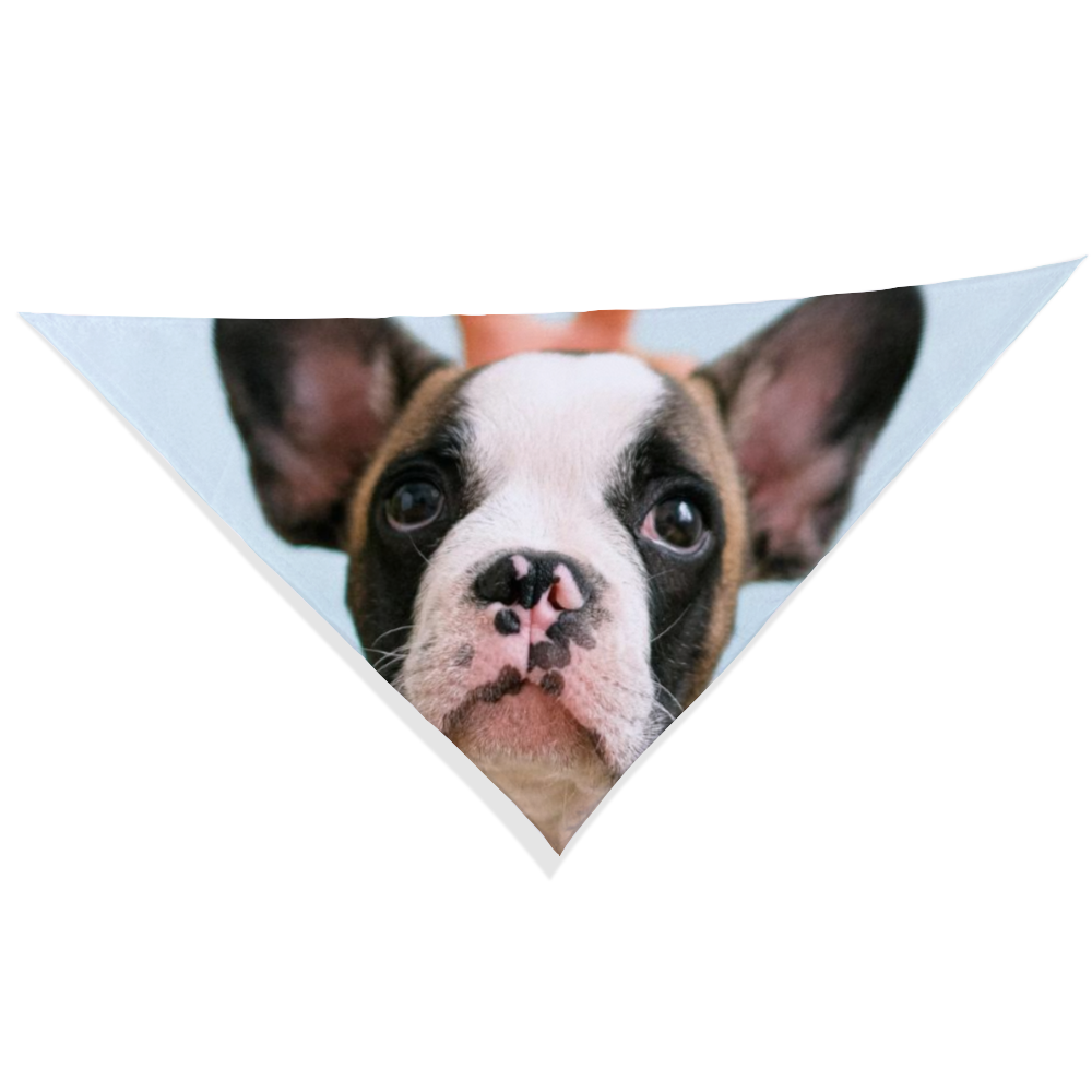 Personalized Pet Bandana with One Custom Photo
