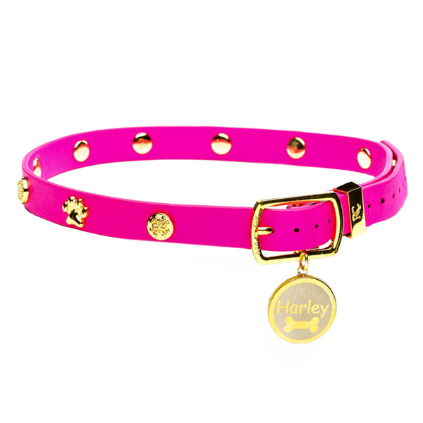 Dog Collar Hot Pink with Gold
