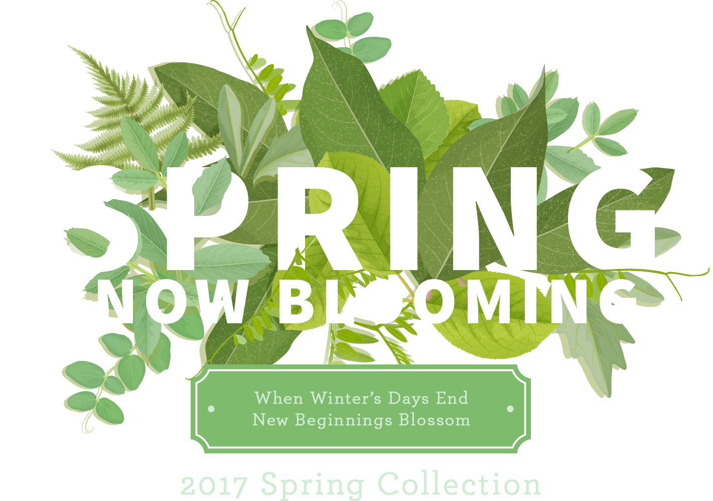 Spring Now Blooming. When winter's days end, new beginnings blossom. 2017 Spring Collection