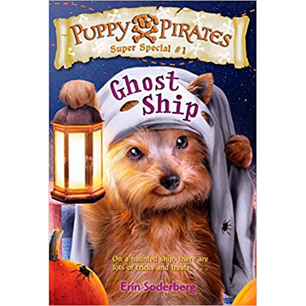 Ghost Ship (Super Special Puppy Pirates, book 1)