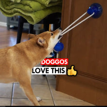 Load image into Gallery viewer, Multi function Dog Suction Cup - Smart Widget