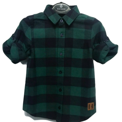 Beau Hudson buffalo plaid green