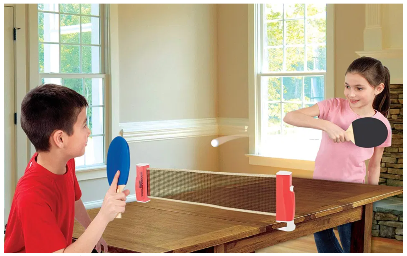 Recess at Home with PingPongly Table Tennis Net
