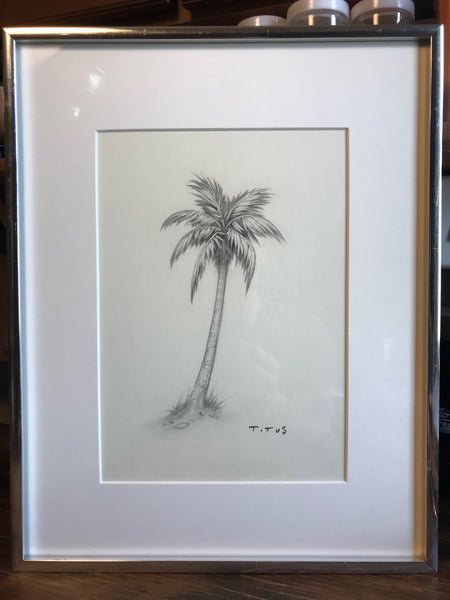 Palm Shell (7x9 inches, framed)